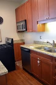 removable kitchen backsplash extraordinary removable kitchen backsplash images design ideas