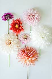 Flower by 1001 Best Flowers Make Me Smile Images On Pinterest Flowers