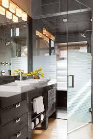 semi transparent frameless shower doors cool vessel sink