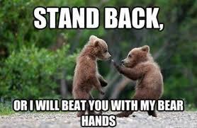 Karate Memes - westlife split jokes