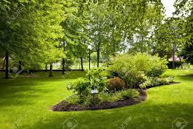 jardin paysager avec piscine jardin paysagé banque d u0027images vecteurs et illustrations libres