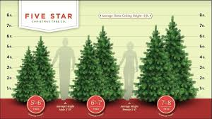 tree questions five trees real 6 1 2 foot artificial size