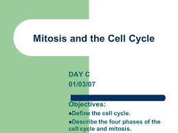 vocabulary cell cycle interphase mitosis cytokinesis spindle ppt