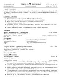 Detailed Resume Examples Detailed Resume Template