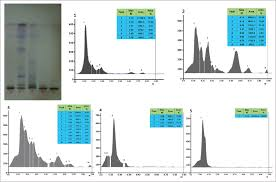 characterization of the phenolic compound gallic acid from