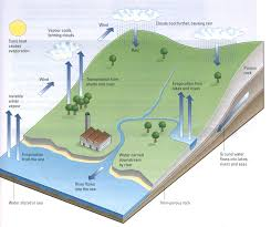 ielts sample essays band 8 ielts sample charts for writing task 1 water cycle ielts diagram