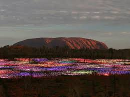 field of light uluru best time to book a trip to uluru in the northern territory escape