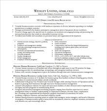 Human Resource Resume Sample by Best 25 Executive Resume Template Ideas Only On Pinterest