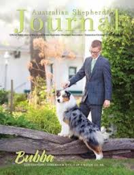 australian shepherd club of america usasa home page usasa