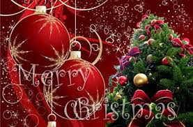 free picture quotes birds 2013 christmas wallpapers