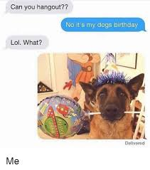 Birthday Meme Dog - can you hangout no it s my dogs birthday lol what delivered me