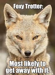 Funny Animal Memes Pictures - animal capshunz funny animal pictures with captions animal memes