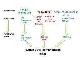 human development index hdi psm easy