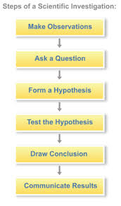 scientific method read biology ck 12 foundation