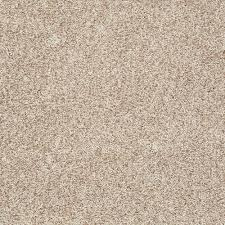 home decorators collection starlight color toasted almond