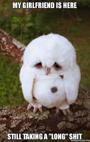 Sad Girlfriend Meme - my girlfriend is here still taking a long shit sad owl make a meme