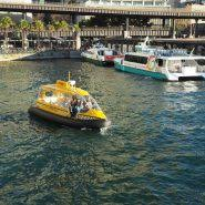 sydney harbour cruise sydney harbour sightseeing cruises with fantasea cruising