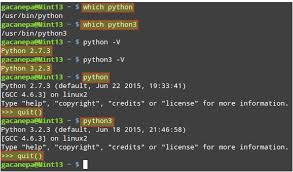 python tutorial ebook getting started with python programming and scripting in linux part 1