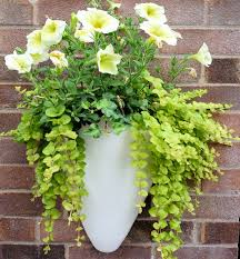wall mounted fibreglass half conical planters for gardens and