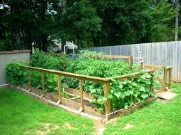 best vegetable garden design u2013 exhort me