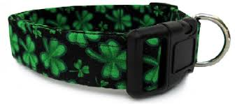 shamrock dog collar u0026 leash for st patrick u0027s day sassy dealz