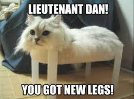 Funny Animal Pictures Memes - funny animal meme album on imgur