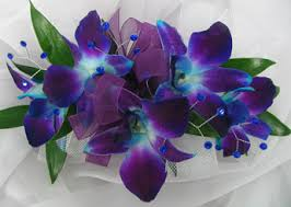 blue orchid corsage blue purple dendrobian orchid corsage w gems in ossining and
