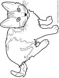 cat coloring pages images cat color pages printable cat free printable coloring pages for