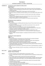 sle resume for business analysts duties of executor of trust senior manager marketing resume sles velvet jobs