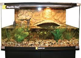 tortoise home decor elegant aquarium turtle home decor design idea and decors how