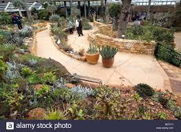 Kirstenbosch National Botanical Gardens by Greenhouse Kirstenbosch National Botanical Garden Cape Town South