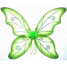 wild fairy wing