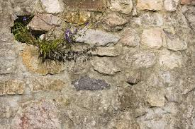 free images rock structure texture soil stone wall material