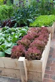 small vegetable garden design vegetable garden small herb