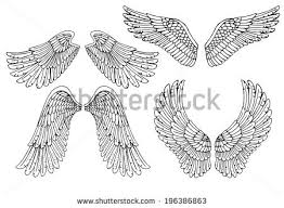 open wings stock images royalty free images u0026 vectors shutterstock