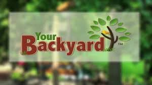 your backyard a young beginner u0027s guide to identifying 18 common