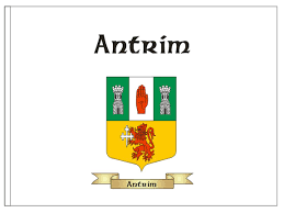Flags For Sale In Ireland Family Crest Flags Coat Of Arms Flags Displaying Your Family