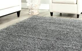Soft Area Rug Soft Area Rug Rugs Beige Shaggy Warm Fluffy Carpet