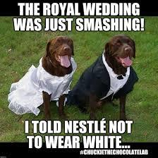 Royal Wedding Meme - royal wedding faux pas imgflip