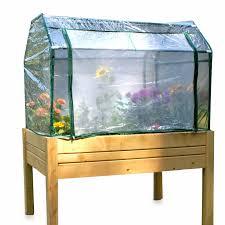 riverstone industries indoor outdoor eden raised mini greenhouse