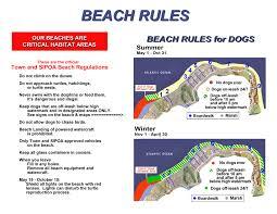 Map Of Kiawah Island Dog Beaches Kiawah Island Sc Beachwalker Rentals