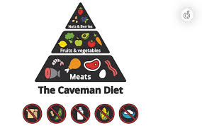 the complete paleo diet food list it includes everything