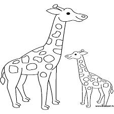 imagenes de jirafas bebes animadas para colorear dibujos para colorear de jirafas animadas