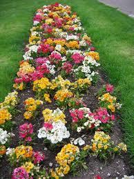 Designing Flower Beds 166 Best Flower Beds Images On Pinterest Landscaping