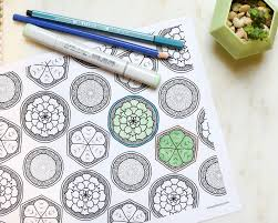 free download succulent garden coloring page u2014 wearable planter