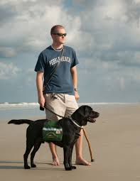 service dogs u0026 the lives they touch a photographic documentary book