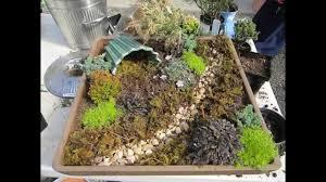 Dish Garden Ideas Creative Dish Garden Decorating Ideas