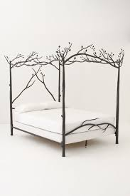 Bed Frame Canopy Forest Canopy Bed Anthropologie