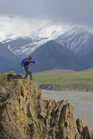 Alaska nature activities images 40 best around alaska images alaska photography jpg
