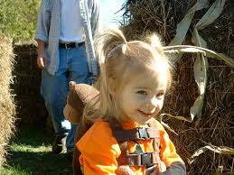 Best Pumpkin Patch Albany Ny by Find Pick Your Own Pumpkin Patches In New York Corn Mazes And